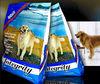Plastic Pet food bag for dog