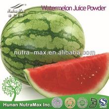 100% Pure Watermelon Juice Powder--NutraMax Supplier