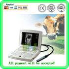 MSLVU08 portable laptop vet equine ultrasound equipment
