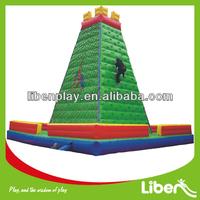 Inflatable Bouncer inflatable bouncing inflatable castle Air bags LE.CQ.094