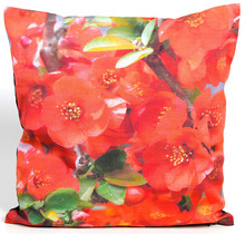 Red Poppy cushion cover