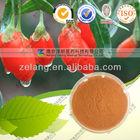 Natural Goji Berry Extract Powder