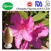 Rhododendron dauricum l./Rhododendron dauricum extract/Rhododendron dauricum p.e.
