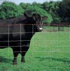 Galvanized Cattle Fence / Grassland Fence / Deer / Horse / Sheep