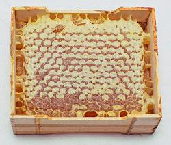 Wooden Frame Honey Comb