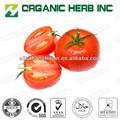 licopeno (extracto de tomate) en polvo