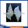 Venta al por mayor de concha marina natural, mar de concha de caracol, triton nudosa caracol 15-25cm tamaño