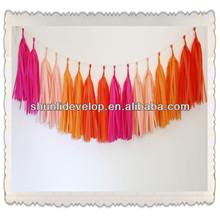 Rose Hanging Tissue Paper Tassel Garland Kit