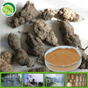 20:1 hot sell he shou wu extract powder ho shou wu