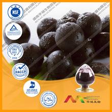 GMP Supplier Super Fruit Supplement Acai Berry Extract
