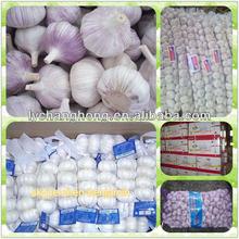 Garlic braids/braids garlic