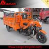 atv Trike/250cc Electric Trike/Three Wheel Motorcycle