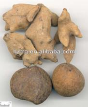 Natural gallnut P.E./ schizandra berry extract/ schizandra