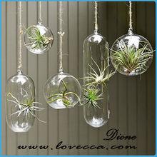 wholesale clear glass christmas ball ornaments,hanging glass terrarium,glass globe hanging terrarium