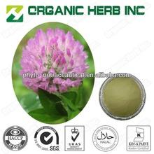 isoflavones red clover extract