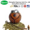 30% Polyphenols China manufacturer yerba mate extract powder