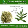 Halal&Kosher Olive Leaf Extract in Bulk,Natural Olive Leaf Powder Extract,Olive Leaf Extract Side Effects