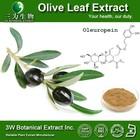 Halal&Kosher Olive Leaf P.E/Olive Leaf Extract in Bulk/Natural Oleuropein