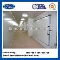 Caminar- en industrial cámara de refrigeración/nevera-congelador/cámaras frigoríficas precio