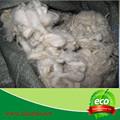 lã de carneiro preço