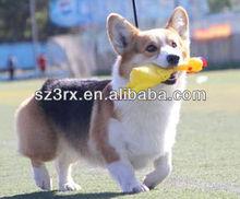 vinyl dog squeak toy,vinyl squeak chicken for dog,vinyl toy for pet