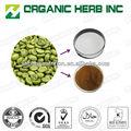 grão de café verde extrato cápsulas de emagrecimento
