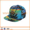Gold Plate Tie Dye Snapback Cap with Metal Patch Hat
