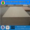 birch plywood a/b glade with good price