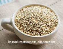 Branco QUINOA semente