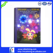 China Wholesale Gift Item Light up Personalized Diary with Lock