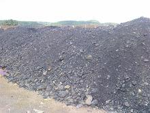 Assam coal