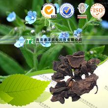 pure herbal medicine radix arnebiae seu lithospermi from GMP manufacturer