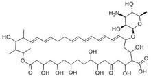 cas no 1400-61-9 AntifungalAntibiotics Nystatin