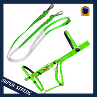 Leather Protective Halter and Reins with Rubber grip