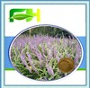 100% Natural Dwarf Lilyturf Tuber Extract