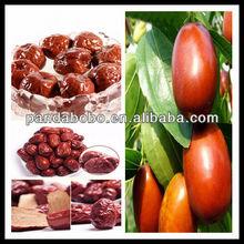Xinjiang fresh dates fruit&dried fruit dates in factory price
