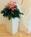 Blanco florero cuadrado, de plástico blanco de macetas de flores, macetas maceta cuadrada