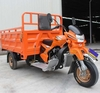200cc 250cc 300cc trike motor /cargo trike/3 wheel tricycle