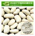 De alta calidad de frijol blanco riñón extracto en polvo, las mejores ventas de frijol blanco riñón extracto en polvo