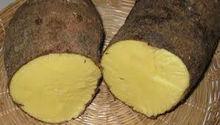 yellow yam sweet potato scotch bonnet pepper breadfruit