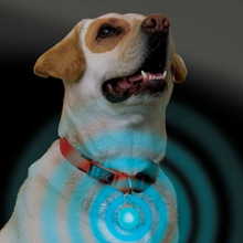 2014 new product Dog Cat Pet Puppy Safety Flash LED Collar Light