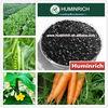 Humirich Shenyang 55HA+10K2O 100% Soluble Humic acid | Super Potassium Humate Manufacturer
