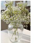 Shu Wen classic clear glass vase fashion home decor furnishings