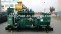 Prezzo di fabbrica! CE& iso approvato generatore di gas naturale 120kw