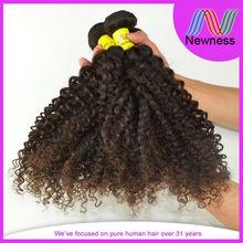 Kinky Curly Brazilian Hair Brazilian Loose Curl Weave