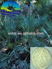 100% Pure nature Saw Palmetto Best Quatily Saw Palmetto Extract 25% Fatty acid