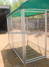 Chian link dog kennel/dog cages for sale