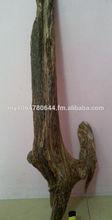 Agarwood log