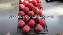 China Shandong 2014 crop fuji apple