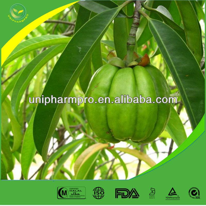 garcinia cambogia plant seed promotion